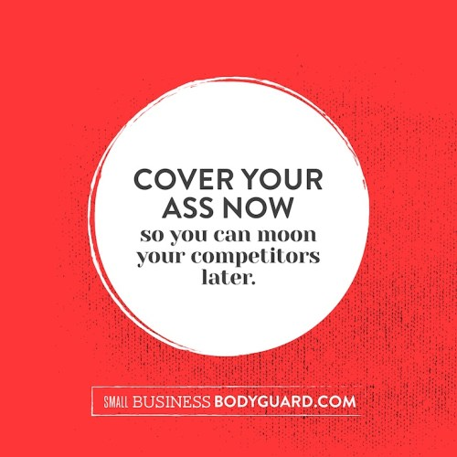 The price of Small Business Bodyguard is going up!